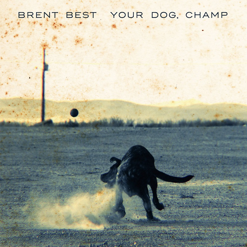 brent best your dog champ